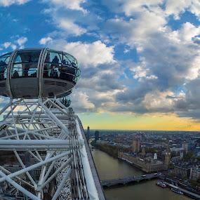 London Eye by Morten Gustavsen - Buildings & Architecture Public & Historical ( london eye, london, westminster, big ben, evening )