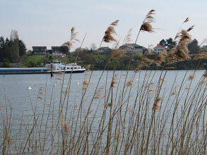 Photo: Day 22 - On the River Moselle