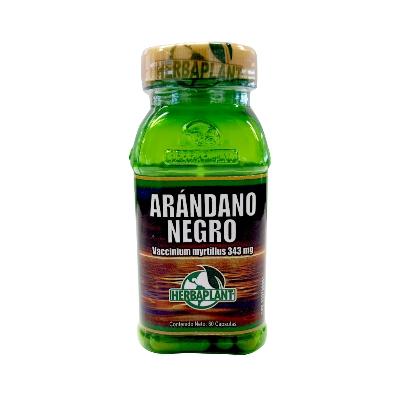 Arándano negro Herbaplant 343 mg X 60 cápsulas  ARANDANO NEGRO HERBAPLANT 343 MG X 60 CAPSULAS