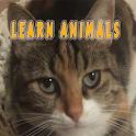 ANIMALS by C. U.(from Bilsem) icon