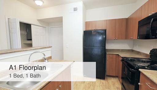 A1 Floorplan 1 Bed 1 Bath Cumberland On Granbury Apartments
