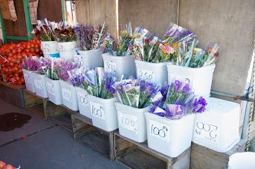 店頭を飾る花
