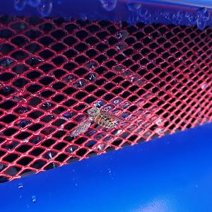 レガシィツーリングワゴン BH5 GTB  S-EDITION のカスタム事例画像 B.シュナイダーさんの2021年08月12日17:39の投稿
