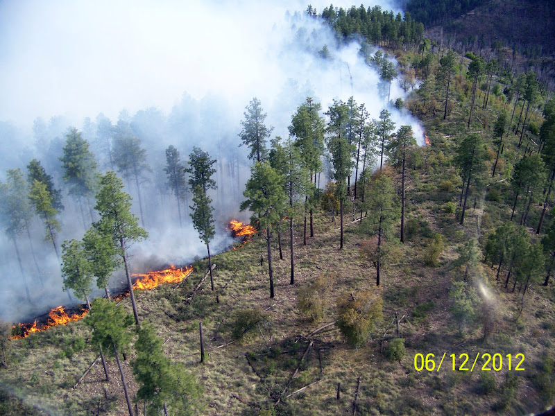 Photo: Bull flat fire in Arizona rages along a ridge line. Credit: Ron Morrison /Ron Morrison Date: May 16, 2012