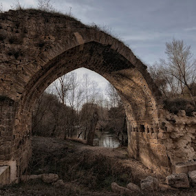 Puente El Roque by Daly Sda - Buildings & Architecture Bridges & Suspended Structures ( old, bridge, architecture, duero, river )