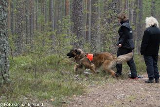 Photo: Azlan og Kari runderer