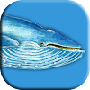 Blue Game Whale APK