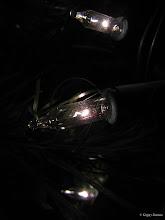 Photo: December 27, 2012 - Christmas Lights #creative366project curated by +Jeff Matsuya and +Takahiro Yamamoto #under5k +Creative 366 Project