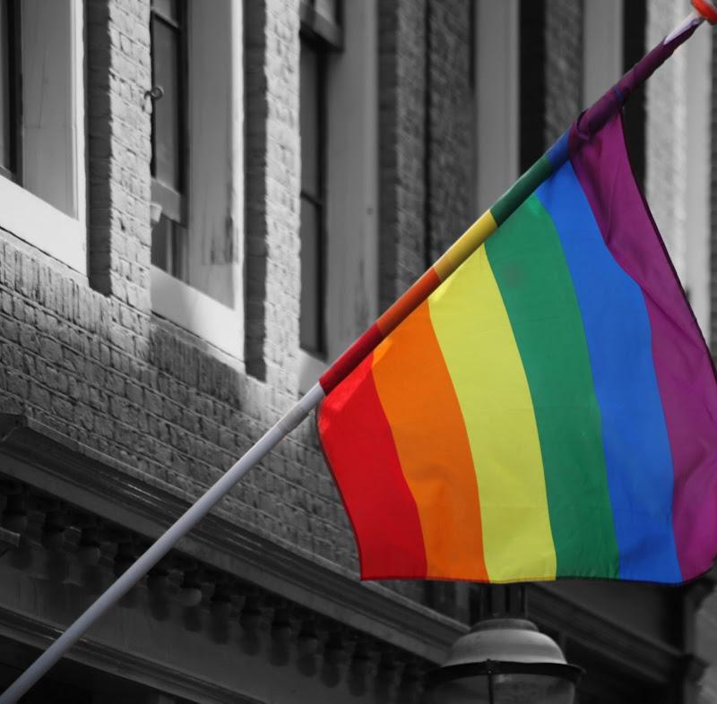 rainbow flag di aritex