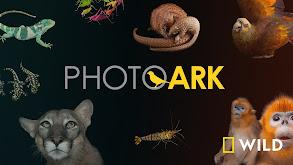 Photo Ark thumbnail