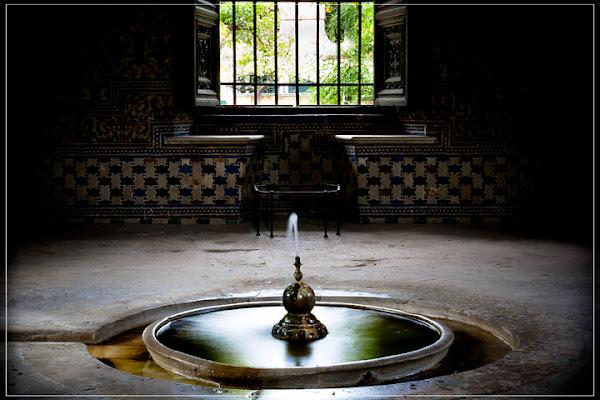 Giardino Arabo d'Andalusia di Frisonfotografia