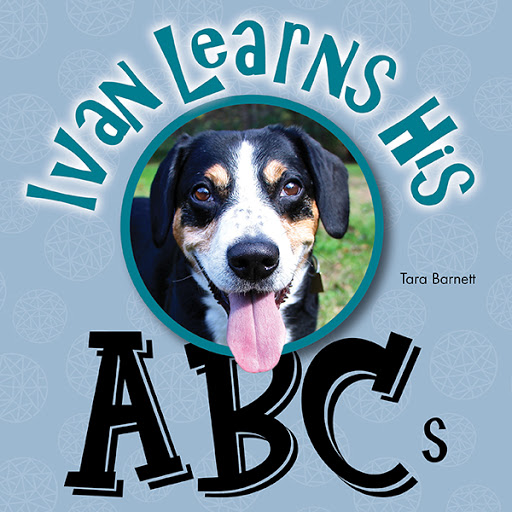 Ivan the Entlebucher Mountain Dog