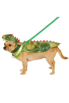 Hunddräkt, Light up Dino Cape