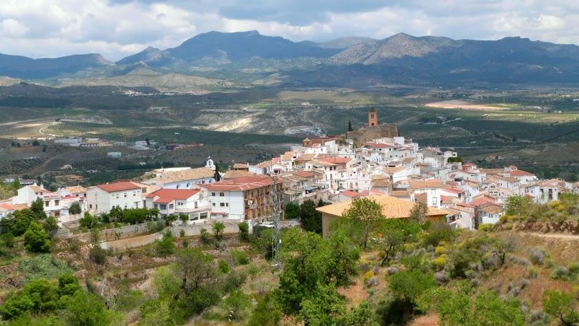 El municipio de Serón cuenta con una variada producción agroalimentaria de gran calidad.