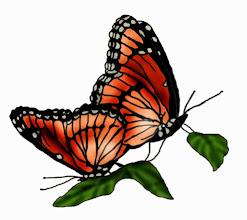 Photo: Monarchfalter - Paarung