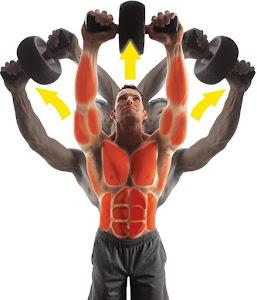 Roata pentru abdomene ideala pentru definirea musculaturii