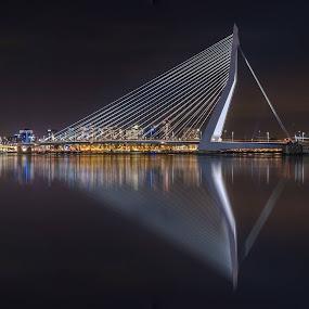 Erasmusbridge (140m) by Rémon Lourier - Buildings & Architecture Bridges & Suspended Structures ( mirror, modern, reflection, rotterdam, holland, architecture, bridge, river )