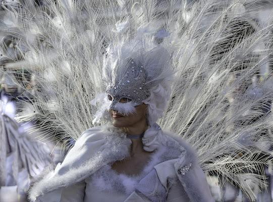 Regina di Fiore Doncovio