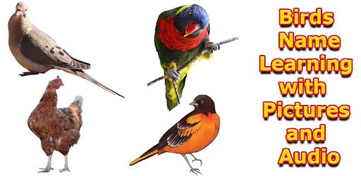 Скачать Birds Names with Pictures for Kids на компьютер (ПК Windows