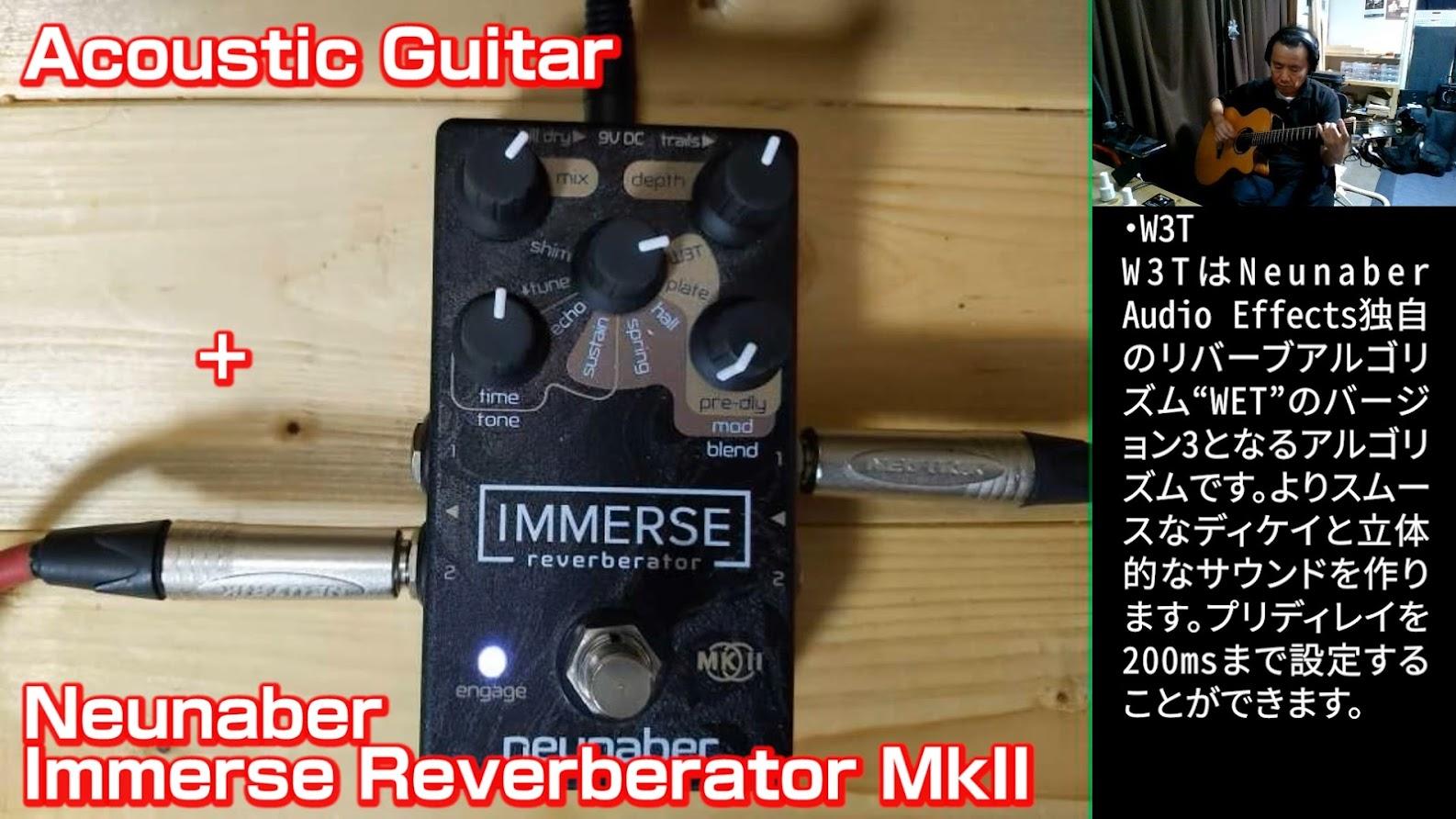 Neunaber Immerse Reverberator MkIIの音のサンプルを動画にしてみました。