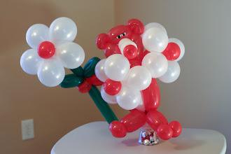 Photo: BearLoon with flowers & treats