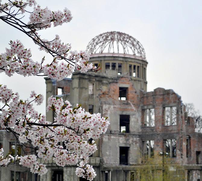 Photo: Sakura and A-bomb dome.