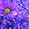 20150814_134527.jpg