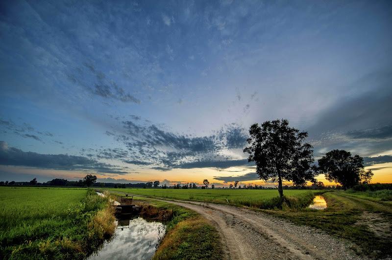 la strada dei campi di Rickytre
