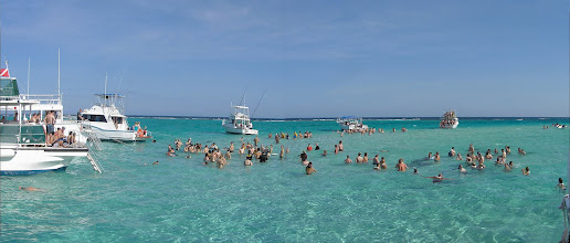 Photo: The usual crowds at Stingray City