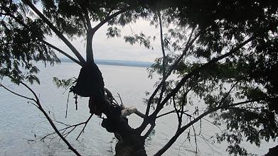 Photo: Parc national de Yaxha - Nakum - Naranjo