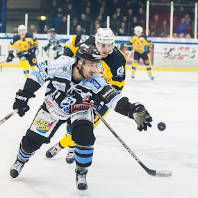 Cory Qurik try to get the puck by M. Andersen - Sports & Fitness Ice hockey (  )