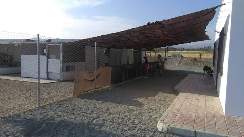 Instalaciones del Centro Municipal de Acogida Canino