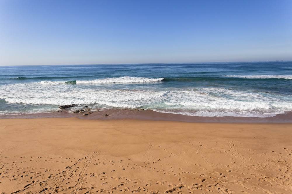 Skedel en menslike oorskot op die Oos-Kaapse strand gevind - SowetanLIVE