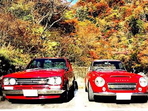 フェアレディー SR311  1969のカスタム事例画像 yurakiraさんの2019年11月17日12:57の投稿