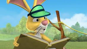 Tigger a Yo-Yo; Pooh Loses His Shirt thumbnail