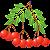 Лекарственные растения file APK for Gaming PC/PS3/PS4 Smart TV
