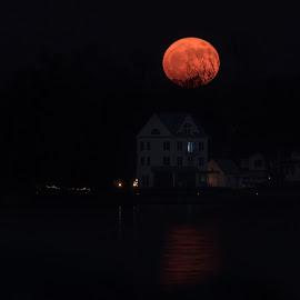 Full Moon by Carol Ward - City,  Street & Park  Night ( annapolis, moon, night photography, night, greenbury point, full moon, nightscape,  )