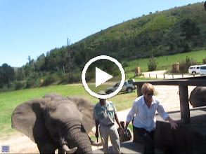 Video: Accidental video from Garden Route
