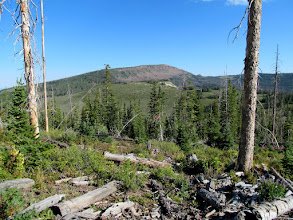 Photo: Mount Terrill