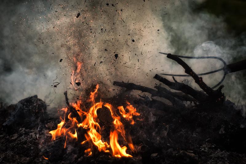 Combustione di Barbara Surimi