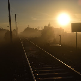 Tracks in The Morning by Jordan Parsons - Novices Only Landscapes