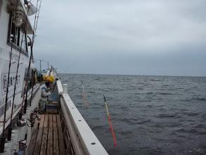 Photo: 前回、好調だった「ウキ流し釣り」 今日もウキがバンバン入ります様に・・・。