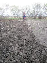 Photo: Mid May - finally able prepare the garden