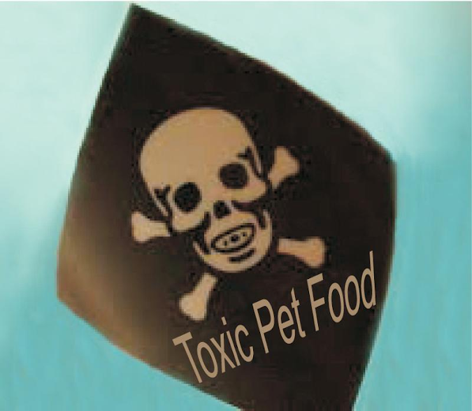 Study says some top pet foods contain abundance of toxins