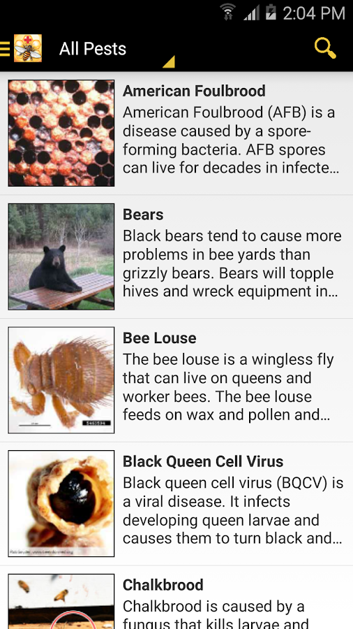 Bee Health- screenshot