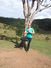 Photo: I'm a tree! (Horton's Plains)