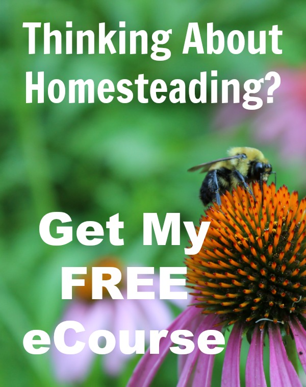 Click here to get your free 10 lesson homesteading eCourse!