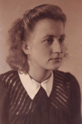 Hendrika Johanna Scharp - bron: ogs.nl