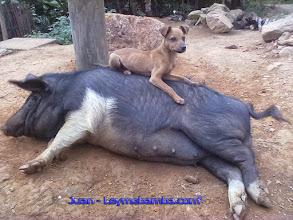 Photo: La amistad no conoce límites