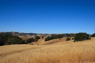 Photo: Helen Putnam Regional Park, Petaluma CA